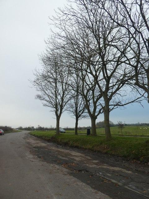 Lay-by near Badgworth Bow Farm