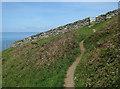 SX6937 : South West Coast Path by Hugh Venables