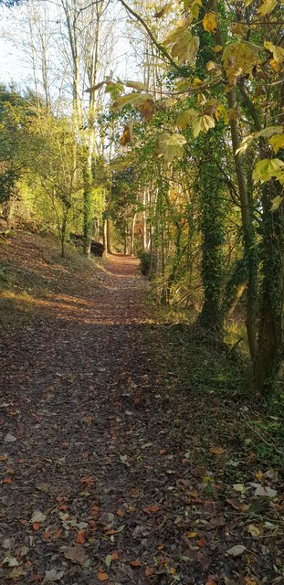 Thames Path in Hartslock Woods