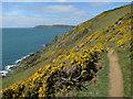 SX7635 : South West Coast Path by Hugh Venables