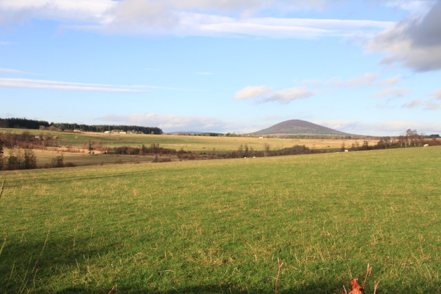 Looking towards Knock Hill from Inchcorsie