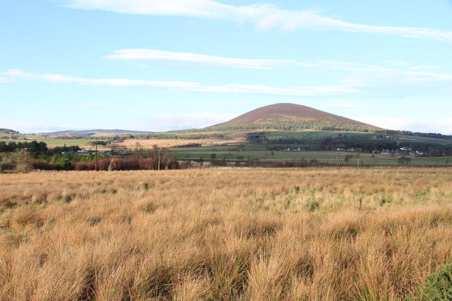 Knock Hill from Clovenstone