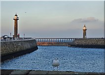 NZ8911 : The entrance to Whitby Harbour by Neil Theasby