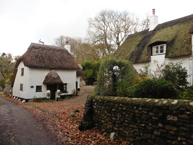 Thatched cottages, Harpford