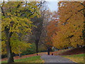 ST3087 : An autumn walk with the dogs, Belle Vue Park, Newport by Robin Drayton