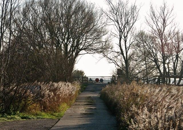 Gated level crossing by Britannia Farm