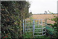SP2596 : Footpath to Hipsley Lane by Bill Boaden