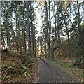 NH6343 : Minor road approaching Balnacraig by valenta
