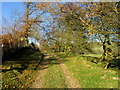 SJ1762 : Bridleway, heading north by John Darch
