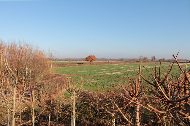 Site of the Battle of Bosworth