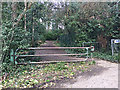 TQ3369 : Lower end of Stambourne Woods, Upper Norwood, south London by Robin Stott