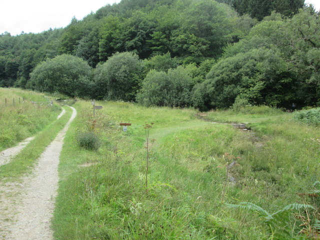 Cleveland  Way  goes  right  and  over  stepping  stones