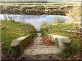 SE5158 : Ferry steps, Beningbrough by Oliver Dixon