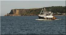 SX9456 : Berry Head and a trawler off Brixham by Derek Harper