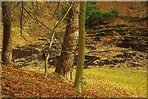 SK1789 : River Derwent, below Derwent Dam by Stephen McKay