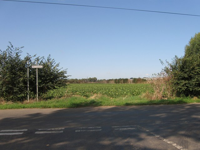 Road junction and finger post