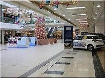 SO9198 : Mander Christmas Tree by Gordon Griffiths