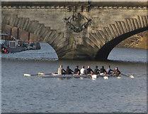 TQ1977 : Rowers on the Thames near Kew by Paul Harrop