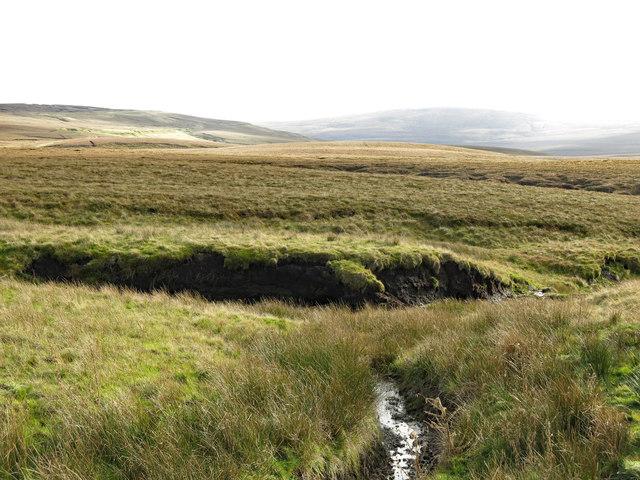 Moorland around John's Burn