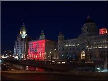 SJ3390 : Royal Liver Buildings, Liverpool by Brian Deegan