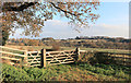 SU7487 : Chiltern Scenery near Bosmore Farm by Des Blenkinsopp