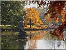 TQ1876 : The Pond, Royal Botanical Gardens, Kew by Paul Harrop