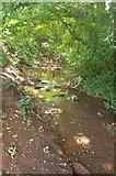 SX8760 : Stream, Great Parks valley by Derek Harper