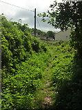 SX8760 : Footpath to Highfield Crescent, Paignton by Derek Harper