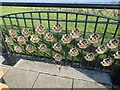 NZ4349 : Part of Seaham's Field of Remembrance by Les Hull