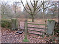 SJ2484 : Gateway and stile on Thurstaston Common by John S Turner