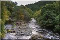 NY2823 : River Greta by Ian Capper