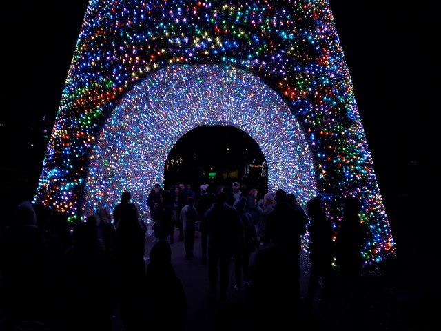 Bournemouth: walking through a Christmas tree
