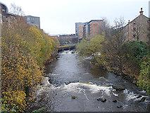 NS5666 : River Kelvin by Anne Burgess