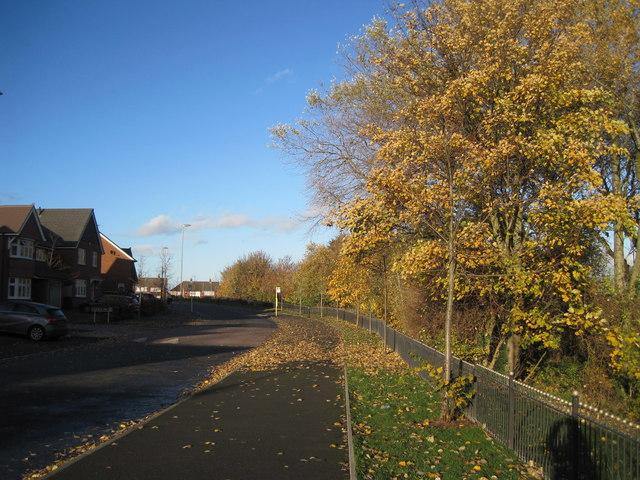 Holly Bank Avenue, Summerhill Park