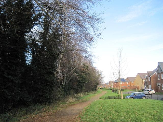 Footpath Summerhill Park