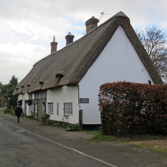 Litlington: Oak Cottage and beech hedge