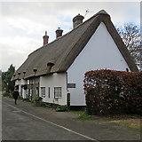 TL3142 : Litlington: Oak Cottage and beech hedge by John Sutton