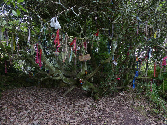 The clootie tree at St Euny's Well by Chris Gunns
