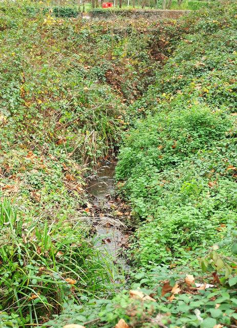 Torre valley stream