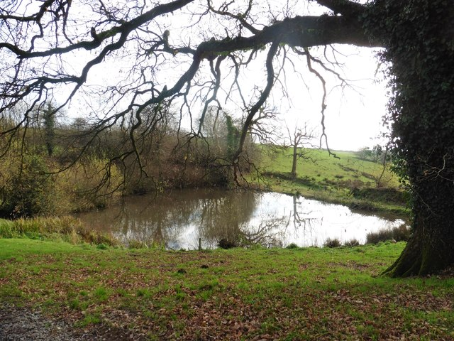 Pond at Coombshead