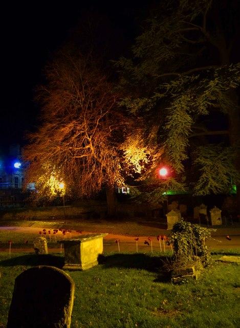 Illuminated tree in churchyard of St. Mary's, Church Green, Witney, Oxon