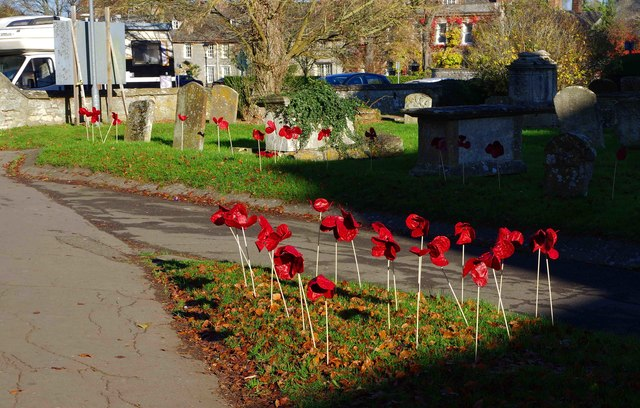 Poppies in the churchyard of St. Mary's, Church Green, Witney, Oxon
