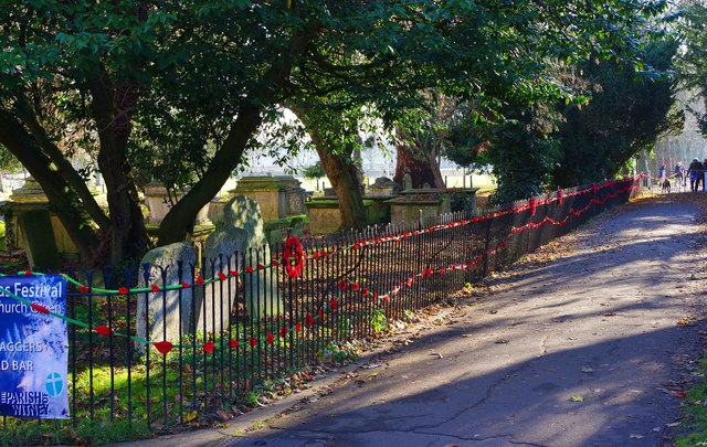 Poppies on railings, St.Mary's graveyard, Witney, Oxon