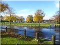 TQ4577 : After a rain shower on Winns Common by Marathon