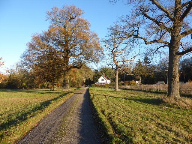 Track towards the Lodge on Sandy Hill, Shrubland Park