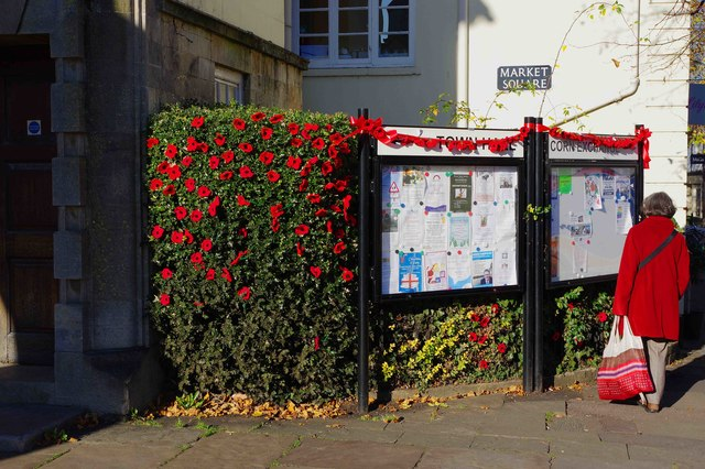 Poppies on hedge and noticeboard, Market Square, Witney, Oxon