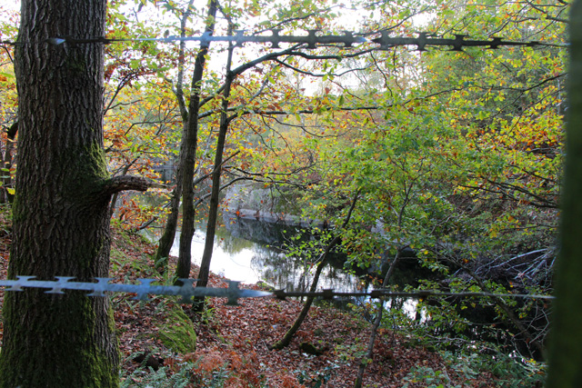 Swithland Great Pit Quarry