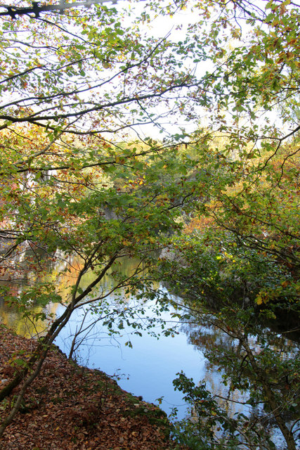 The Great Pit quarry, Swithland Wood
