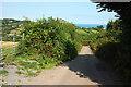 SX9168 : Lane to Gabwell by Derek Harper