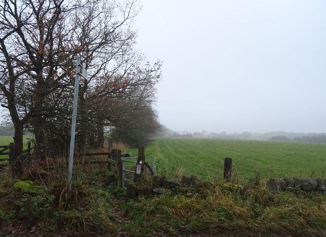 Footpath off Scotland Lane